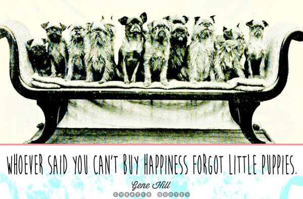 Happiness Puppies